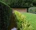 1_dieter_kienast_krummenacher_garden_zurich_switzerland_1995_marc_treib_