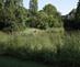 5_gonc_alvo_ribeiro-telles_and_alberto_viana_barreto_gulbenkian_garden_lisbon_portugal_1964