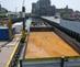 Gowanus_canal_sg