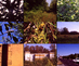 7_pibs_8mm_film