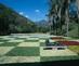 Roberto_burle_marx_garden_of_the_edmundo_cavenellas_residence