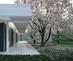 Mhg_korab-02_ext-magnolia