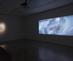 3_amiesiegel_genealogies_2016_hdvideo_exhibitionview_kunstmuseum_stuttgart_copy