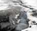 1_tba_schuppli_lfi_athabasca_glacier
